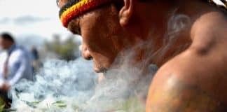 Tabaco y nicotina: Lo ritual que regresa en la modernidad