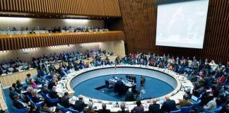 La OMS y la política del tabaco: siete puntos para una reforma