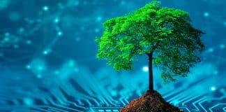 ¿Cómo hacer el vapeo más responsable con el medioambiente?